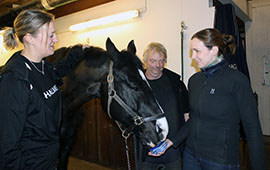 Jennie Sköld, the horse Viggo, Björn Berg and Åsa Hinton